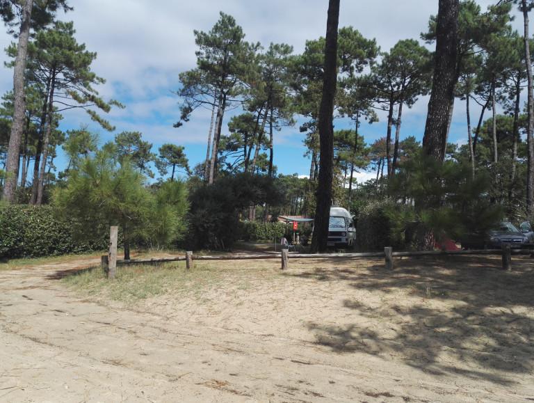VW T3 Bus hinter Strand mit Pinien in Frankreich