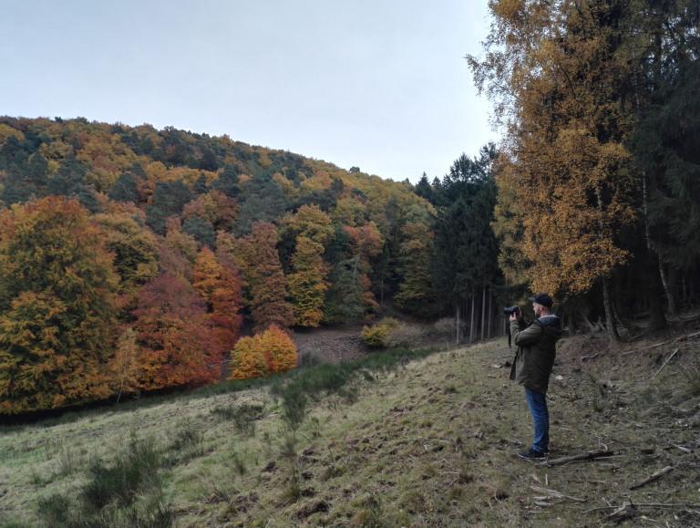 Fotografieren Wald Wetter Himmel Herbst