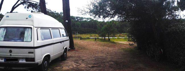 weißer Bulli auf Campingplatz neben Hecke vor Fluss