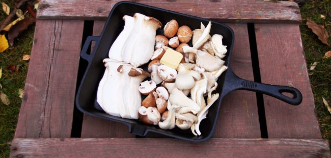 Gusspfanne auf Holzkiste im Garten mit frischen Pilzen