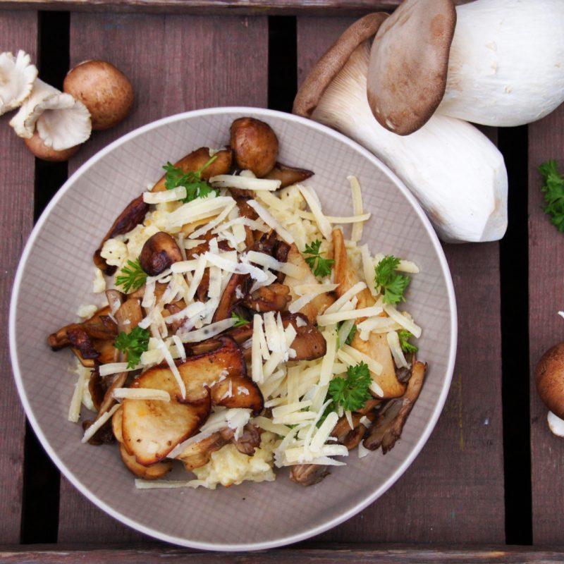 Parmesan Risotto mit frischen Pilzen vom Markt als Camping-Rezept im VW T3 Bulli