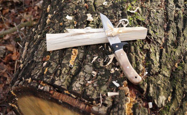 Messer und Fether Stick auf Baumstamm Camping Grillanzünder
